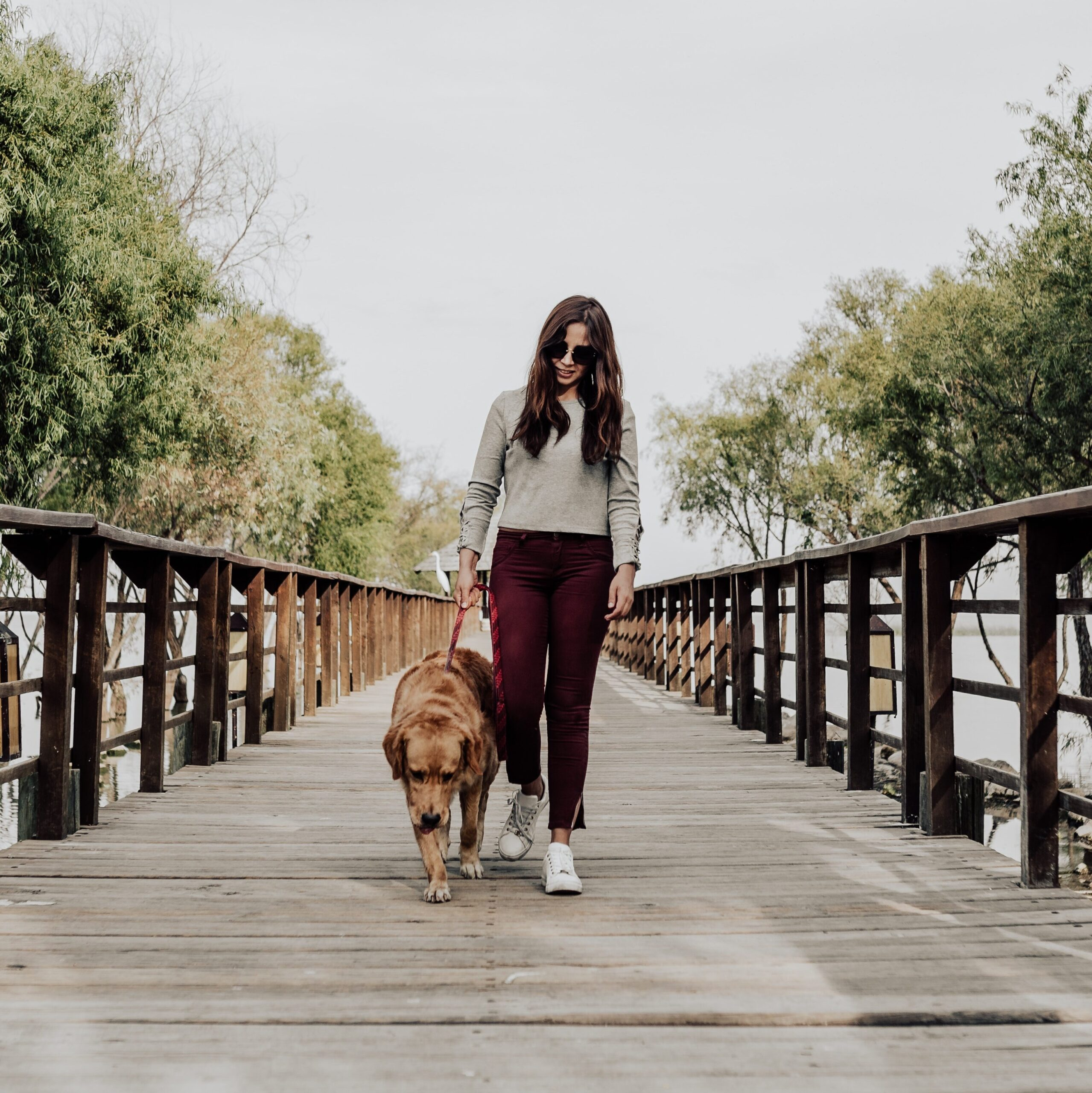 how to make money as a teen - Dog Walking Services
